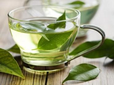 boldo-leaf-tea